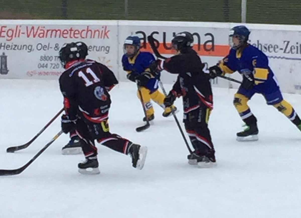 Auf der Eisbahn Brand in Thalwil konnten die Piccolos von Urs Fäs, Roger Bruder und Hans Schneider ihren ersten Turniersieg feiern.
